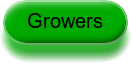 Year of Pulses for Growers